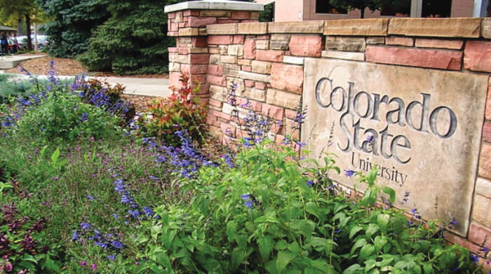 Online Course-Colorado State University-Global